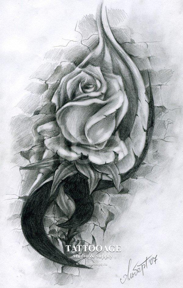 Салон роза