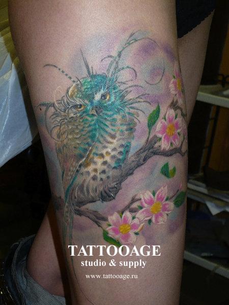 Татуировка сова на ветке с цветами
