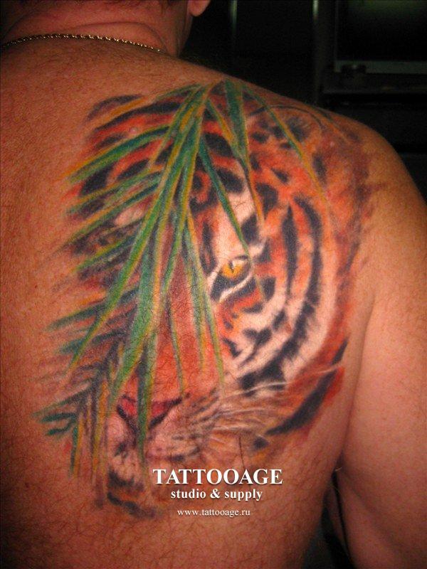 Главная галерея татуировки